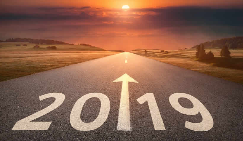 Article: 2019 IN THE HORIZON!